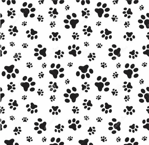 paw print bones wallpaper - photo #9