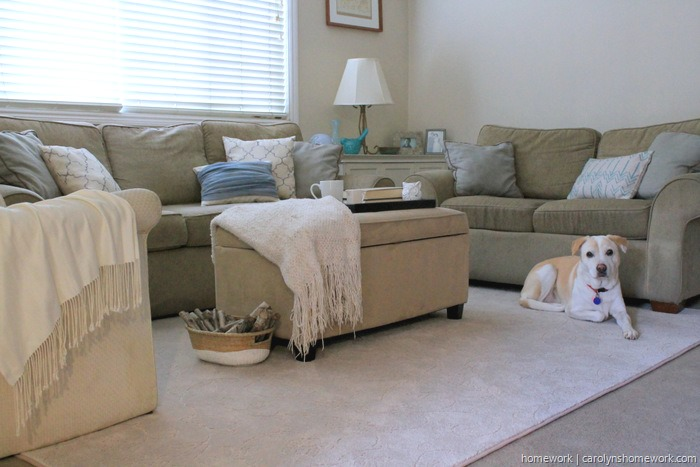 Mohawk Carpet Living Room Decor via homework (10)