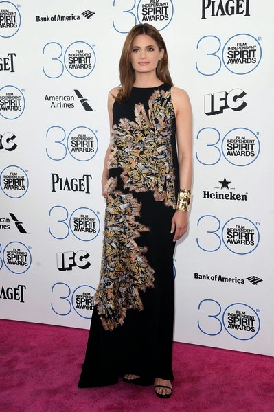 Stana Katic attends the 2015 Film Independent Spirit Awards