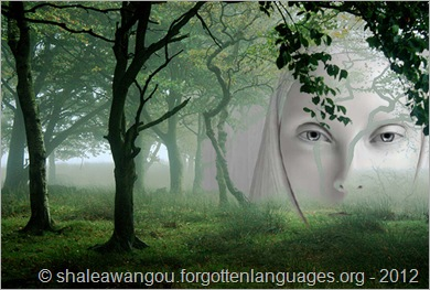 The alien misty forest - © shaleawangou.forgottenlanguages.org - 2012