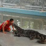 Тайланд 12.05.2012 6-12-53.JPG