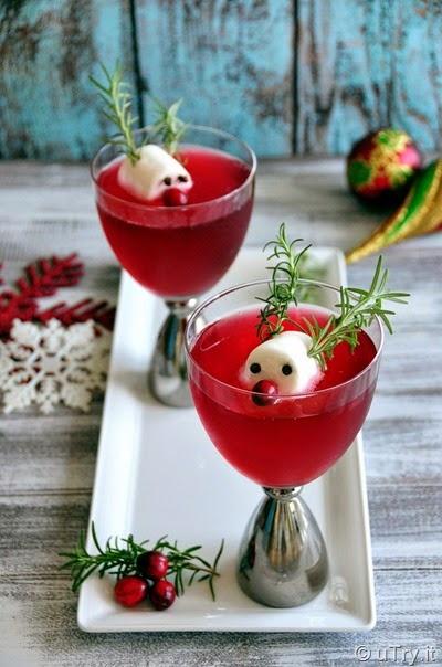 Rudolph's Cranberry Fizz--A fun Cocktail for the Holidays   http://uTry.it