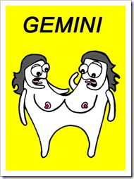 Gambar Lucu Zodiak Gemini 2015