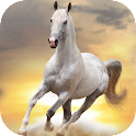 HD Horses Live Wallpaper PRO logo