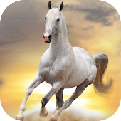 HD Horses Live Wallpaper PRO