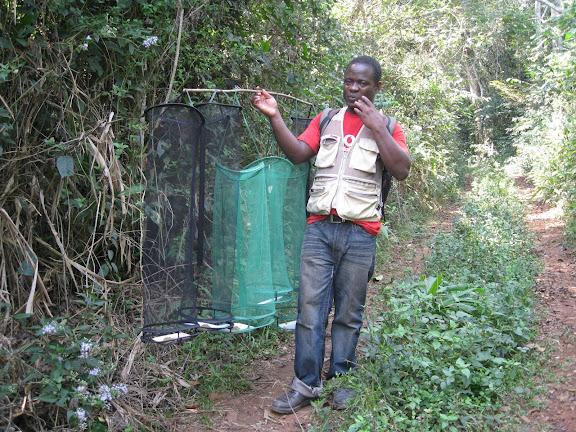 Atewa Hills (Ghana), 28 décembre 2009. Photo : Henrik Bloch