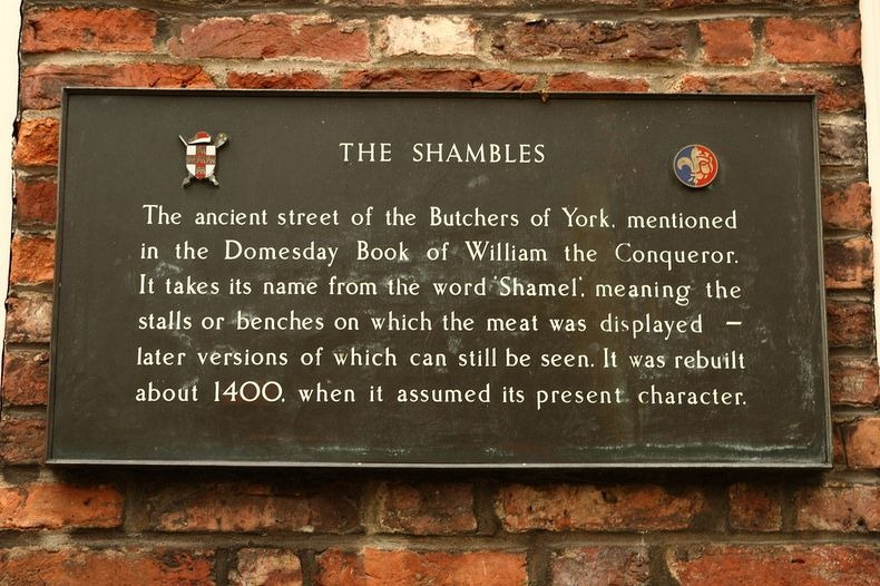 the-shambles-7