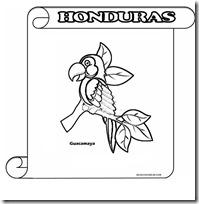 Símbolos Patrios De Honduras Para Colorear Colorear Dibujos Infantiles