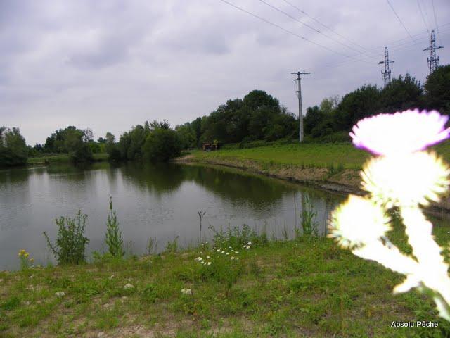 Etang le Tilleul photo #353
