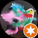 Zahar C.,AutoDir