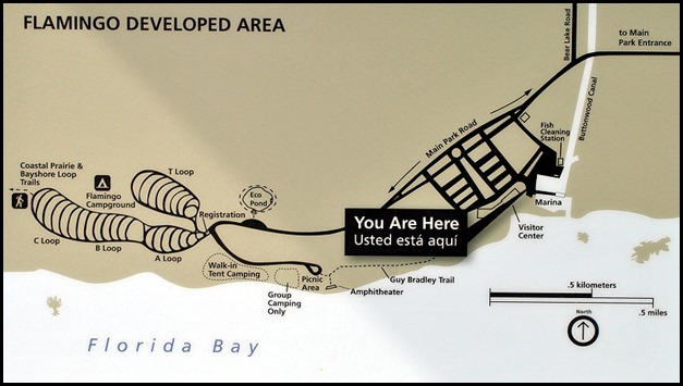 01 - Campground Map