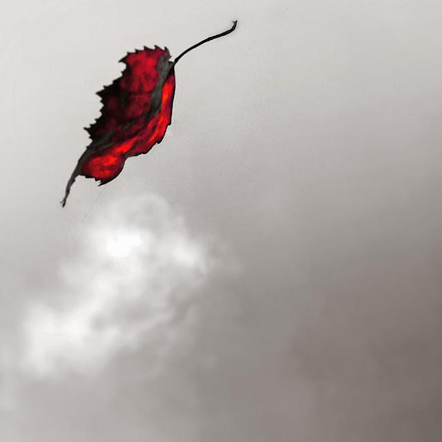 Wer jetzt kein Haus hat, baut sich keines mehr ... Inspirationen für die poetische Herbstdeko mit Rainer Maria