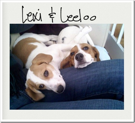 Lexi and Leeloo (2)