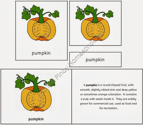 The Pumpkin Preview