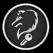 nV Tweaks Pro Silver (M8)