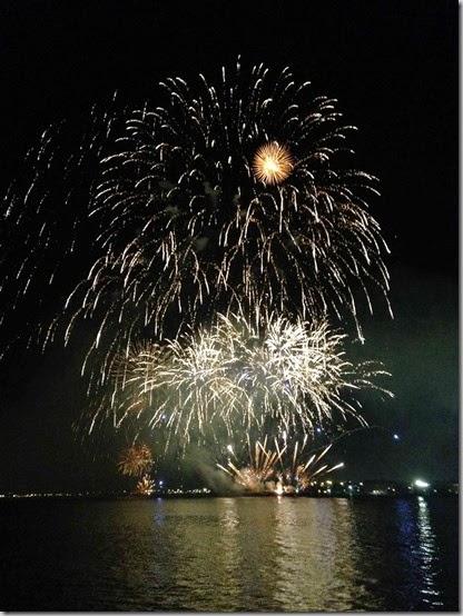 fireworks  (21)