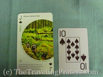 52 Amazing Places National Parks Playing Cards from Birdcage Press