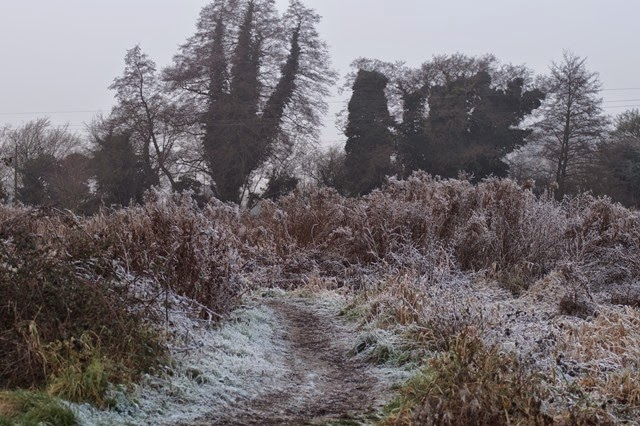 Heavy frost frozen winter Norfolk countryside landscape