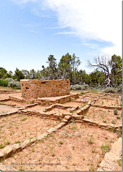 native American ruins at Mesa Verde - photo by Adrienne Zwart
