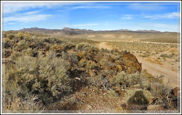 EFP-Cane Site Landscape
