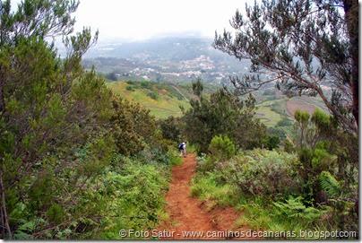 7969 Circular a Firgas R3-Pico del Rayo