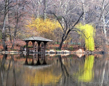 3. willows central park-kab