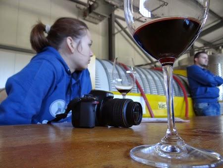Drumul vinului -Basarabia: Vin rosu de Nisporeni