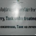 Тайланд 14.05.2012 13-31-56.JPG