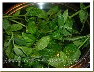 Bevanda fresca alla menta piperita (3)