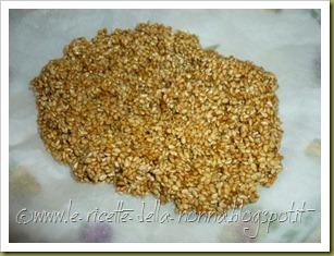 Barrette di semi di sesamo e zucchero di canna (6)