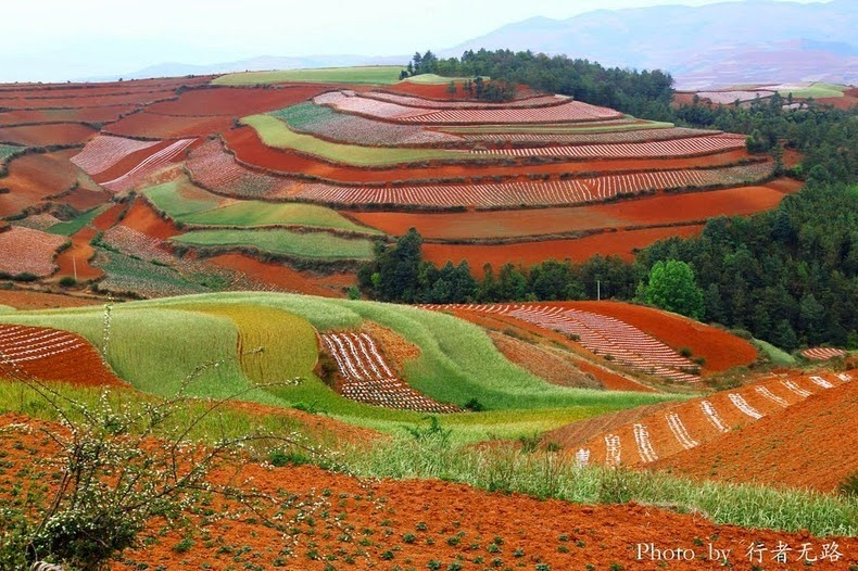 dongchuan-red-soil-16