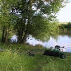 La Loire à Balbigny photo #406