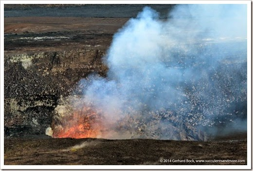140724_HawaiiVolcanoesNP_0231