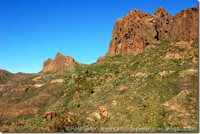 7658 El Aserrador-Paso Herradura(Riscos Chimirique y El Laurel)