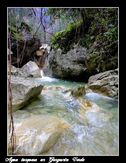 Color turquesa de las aguas