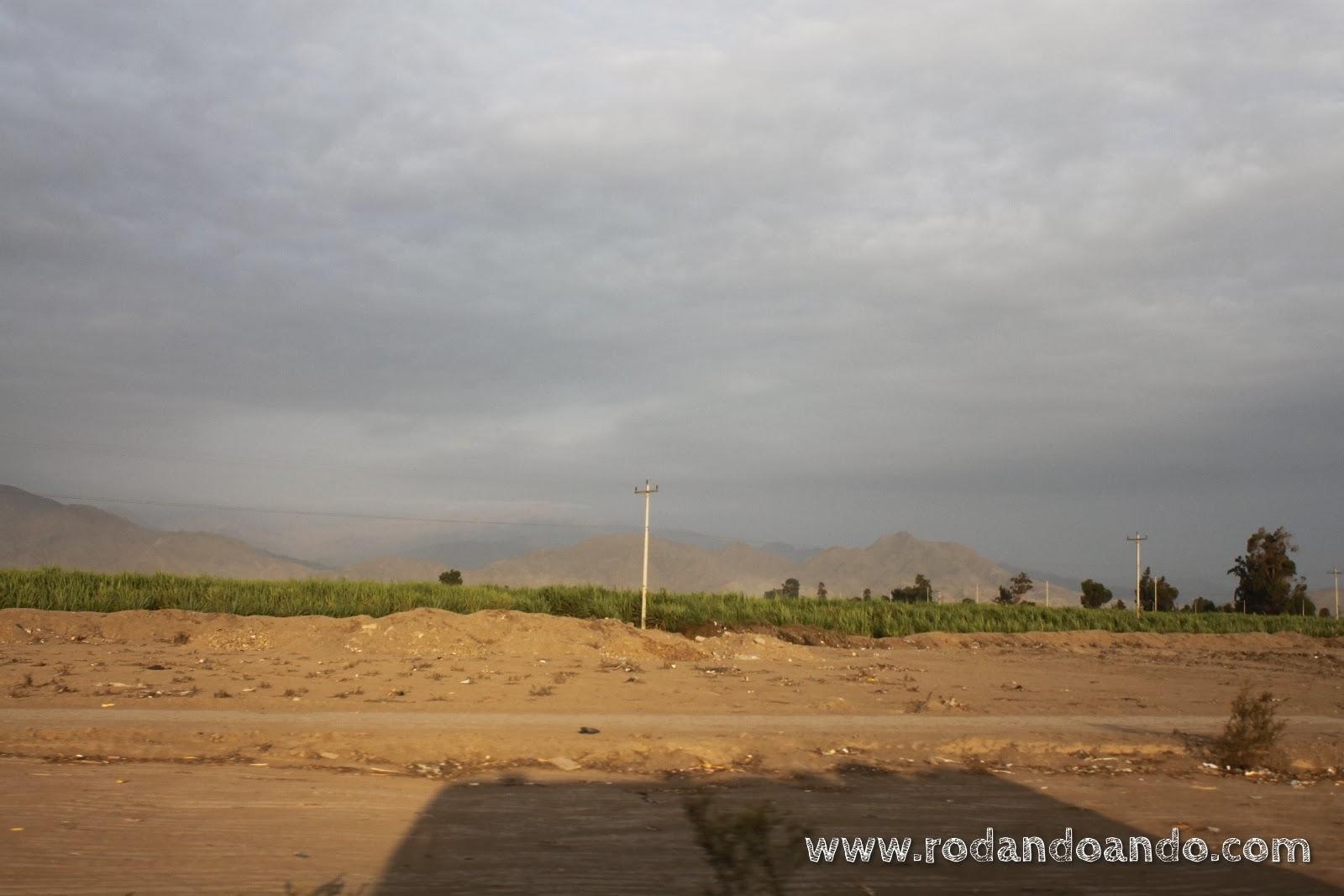 Libertad se dibuja en el desierto