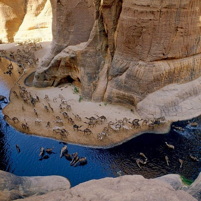 Guelta d'Archei, a Surprising Oasis in Chad