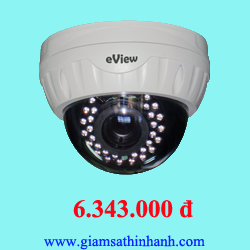 Camera Ip Dome Eview NJD13IR