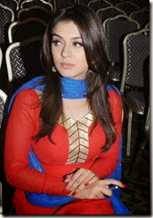 Actress Hansika Motwani @ Maan Karate Movie Success Meet Stills