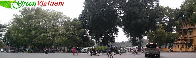hanoi today