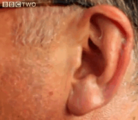 mcgurk ear bbc two