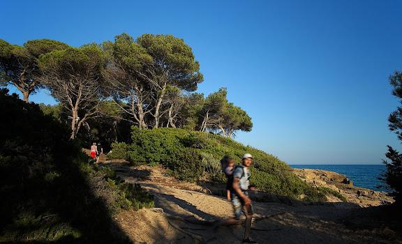 La punta de la Creueta, espai natural protegit, extrem nord de la platja Llarga, Tarragona, Tarragonès, Tarragona