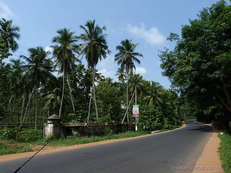 7. sosele Sri Lanka.JPG