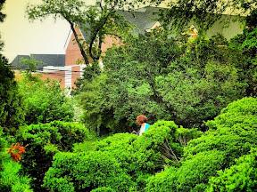 Historic wanderings ratcliffe allison house fairfax city va - The kinder garden llc of kent island ...