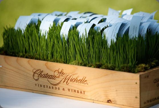 green-wheatgrass-moss-box-place-card boukates