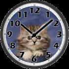 Sweet Cat Clock icon