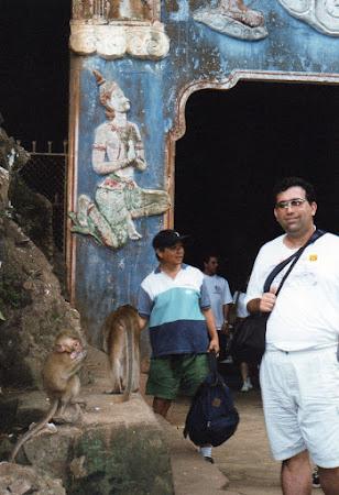 Obiective turistice Thailanda: templu maimute in drum spre Phang Nga