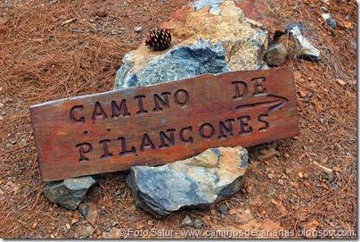 6975 Chira-Cruz Grande(Pilancones)