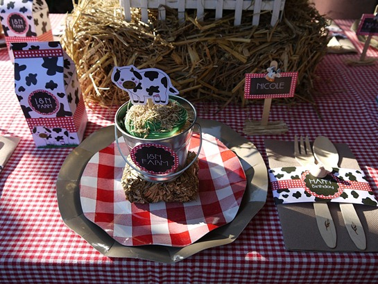 Barnyard Birthday - Kid's Table Setting2