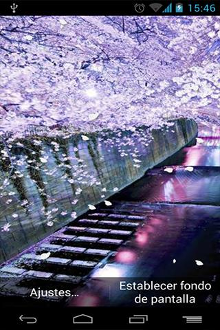 Fondo Animado Sakura